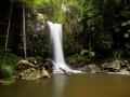 Curtis Falls, Mt Tamborine