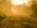 Dusty Sand Track
